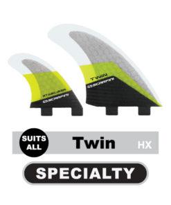 Twin Fins 2